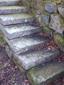 Mos på fliser og trapper